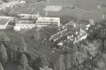 Aerial Photograph 1981